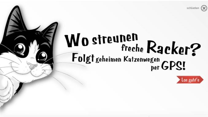 Folgt Felix und entdeckt Katzengewohnheiten