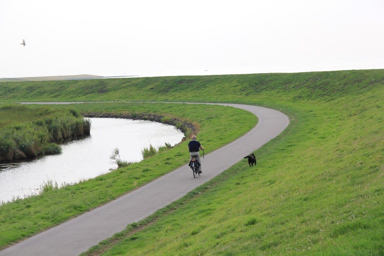Ein Fahrrad auf einem Weg neben einem Deich mit einem frei laufenden Hund