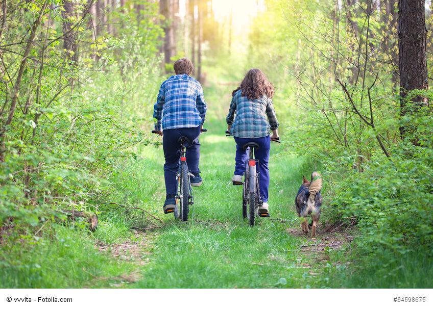Ein junges Paar mit Fahrrädern auf einem Waldweg daneben läuft ein Hund