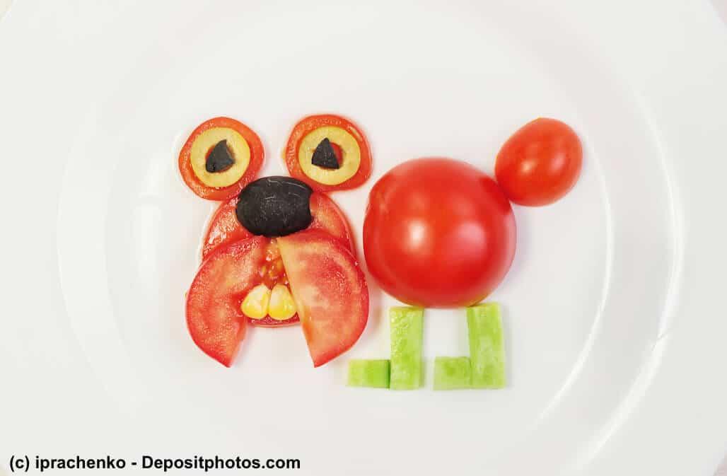 Ein Hund aus Tomaten und Gurken als Sinnbild dafür, ob eine vegane Hundeernährung möglich ist