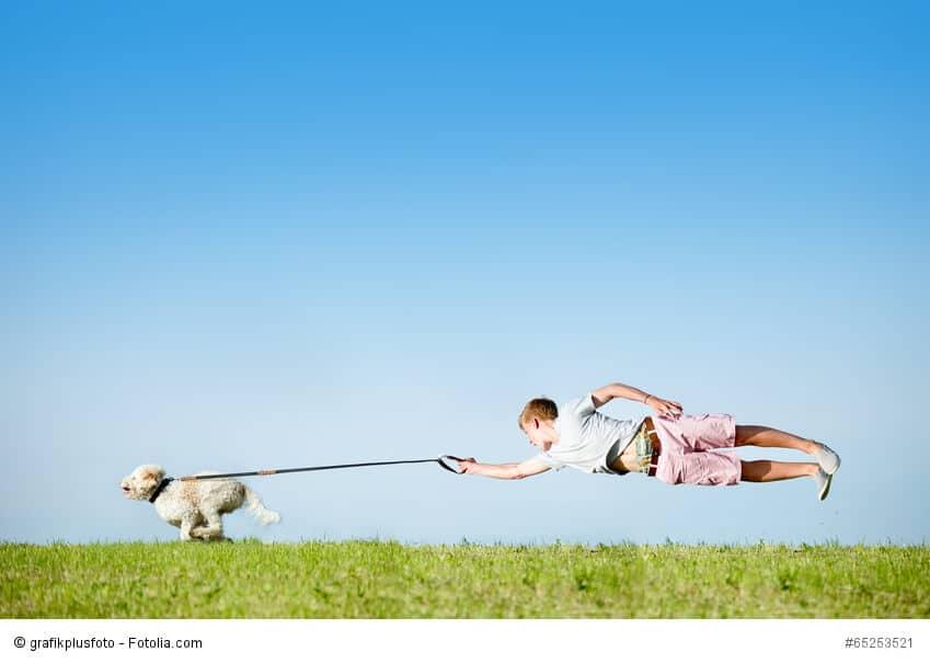 Hund an Leine mit fliegendem Hundebesitzer