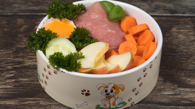hundenapf gefuellt mit fleisch, obst und gemuese