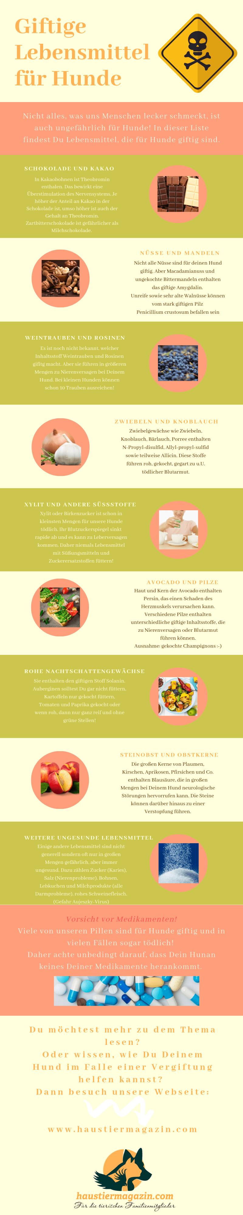 Infografik mit Bildern und Beschreibungen zu den giftigen Lebensmitteln für Hunde.