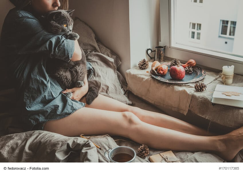 Kuschelzeit für Katze und Mensch