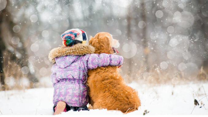Der beste Freund des Menschen benötigt einen regelmäßigen Check up beim Tierarzt