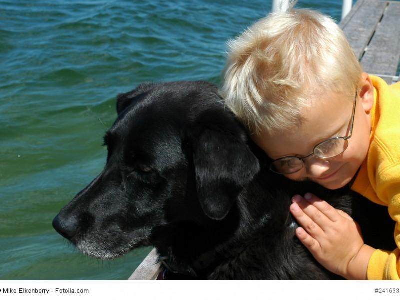 Ein Labrador ist ein sehr kinderlieber und geduldiger Hund.