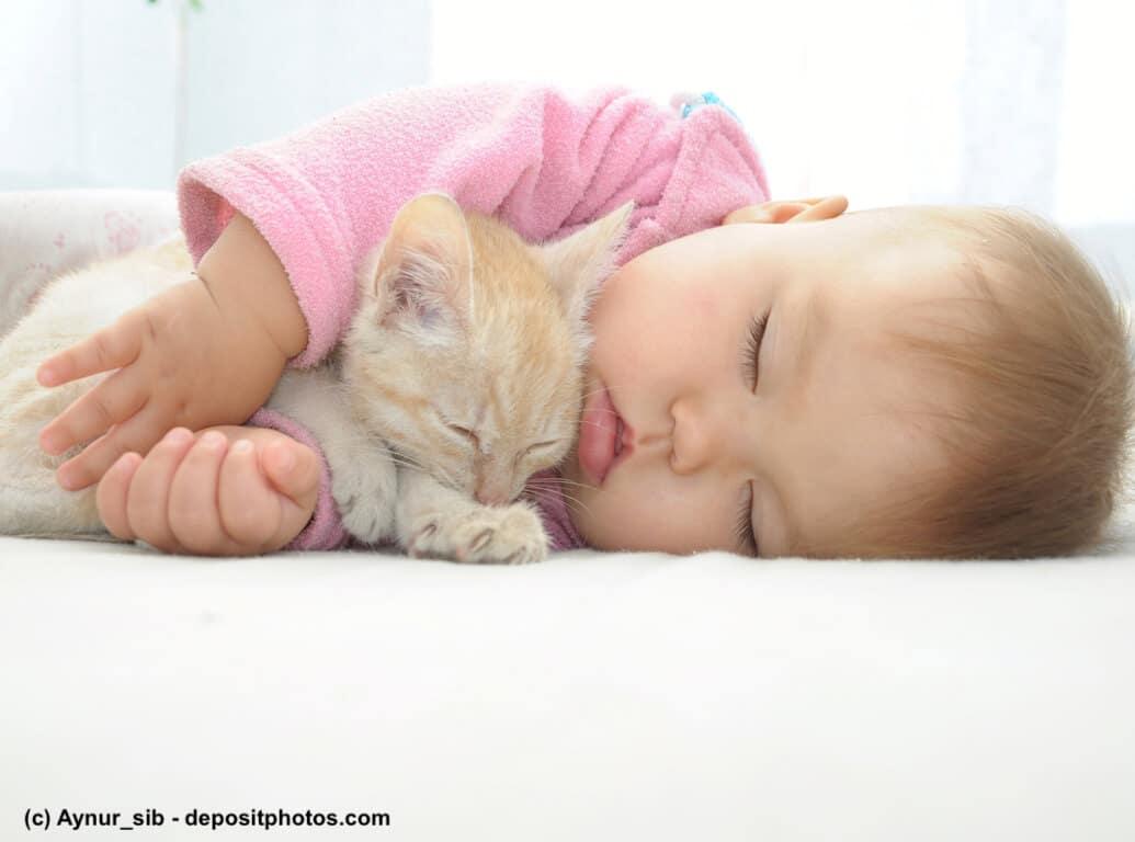 Baby schläft mit Kätzchen im Arm