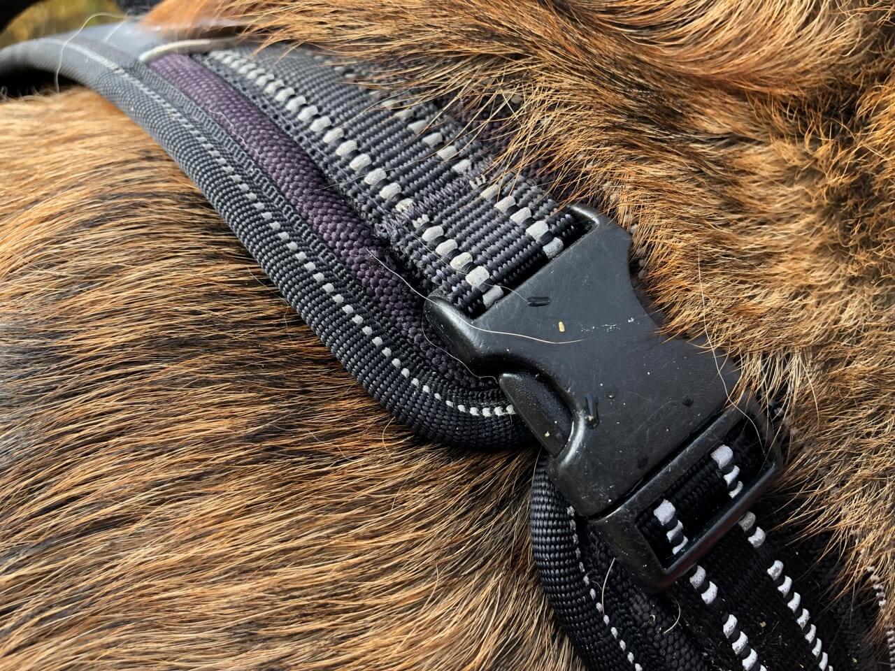 Verschluss Halsbereich Hundegeschirr